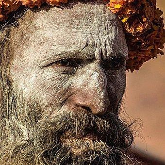 Portrait, Face, People, Hair, Man, Adult, Head