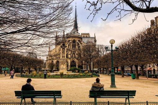 Paris, City, Tourist, Notre-dame, Garden, Fall
