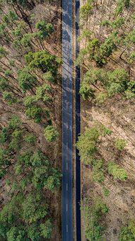 Road, Nature, Landscape, Trees, Aerial View, Dji
