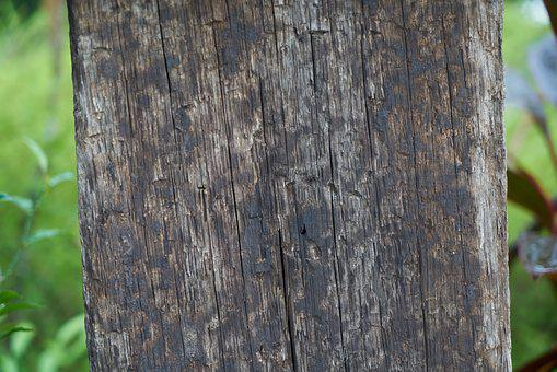 Wood, Timber, Texture, Abstract, Table, Gray Abstract