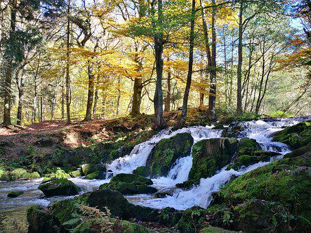 Nature, Landscape, Waters, Wood, Autumn, Waterfall