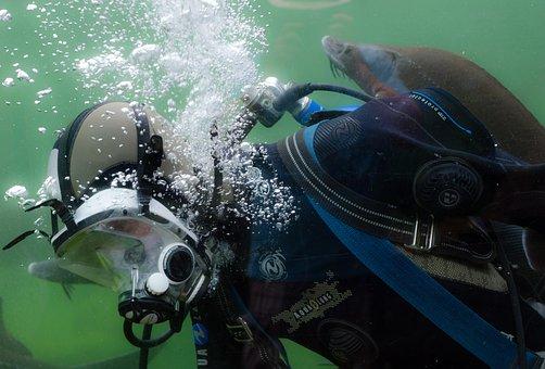 Diver, Diving, Scuba, Ocean, Activity, Sport, Adventure