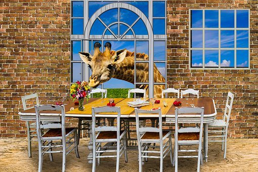 Architecture, Window, Furniture, Table, Board, Chair