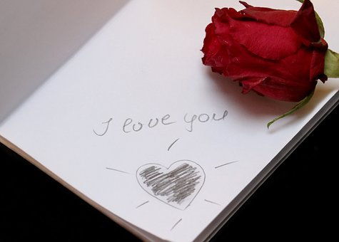 I Love You, Paper, Love, Font, Lettering, Rose