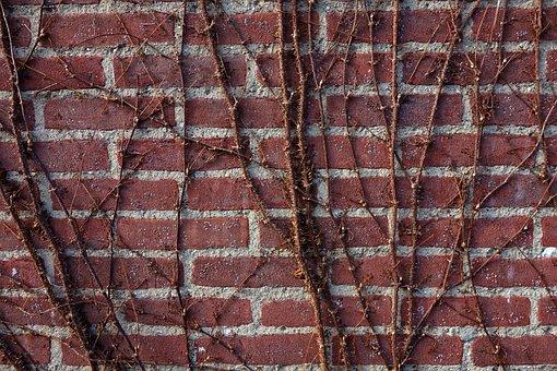 Brick Wall, Wall, Brick, Creeper, Red Brick Wall, Ivy