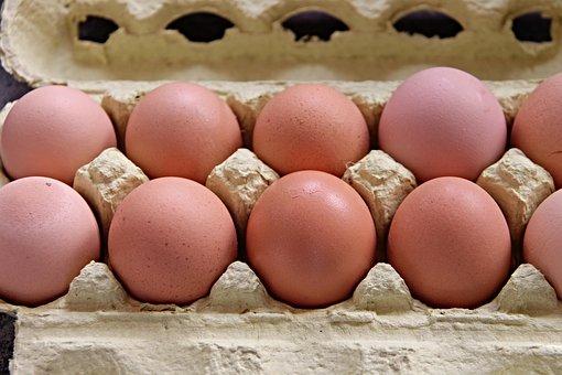 Egg, Box, Brown, Egg Box, Filled, Full, Egg Crate