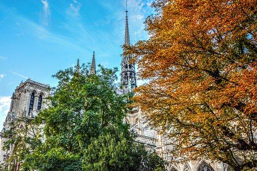 Paris, Notre Dame, Cathedral, Autumn, Fall, Colors