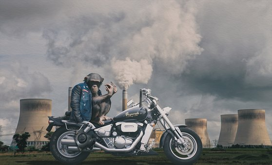 Composing, Monkey, Motorcycle, Gas Mask, Chimney