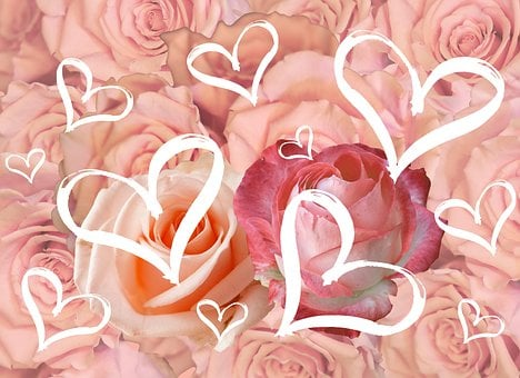 Postcard, Flowers, For The Beloved, Love, Valentine