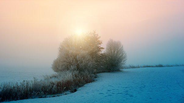 Winter, Fog, Sun, Mood, Nature, Dawn, Sunset, Sky, Bach