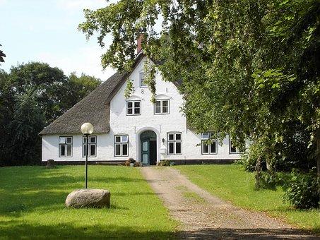 Rush, Tree, Home, Architecture, Grass, Building, Garden