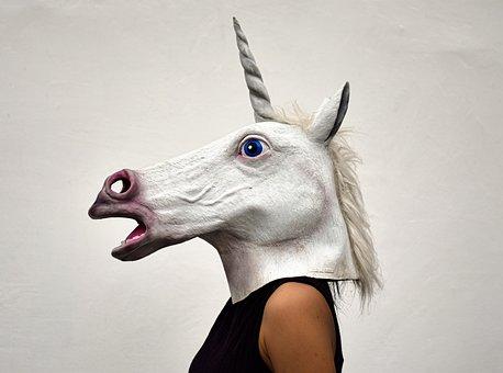 Animal, Mammal, Cute, Portrait, Young, Unicorn, Girl
