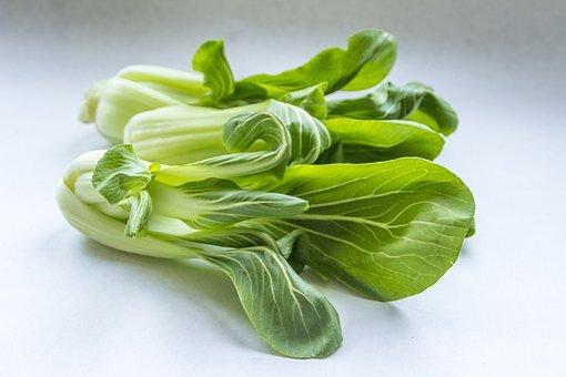 Healthy, Food, Vegetable, Leaf, Desktop, Pak Choi