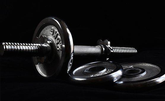 Dumbbell, Dumbbells, Training, Fitness, Muscles