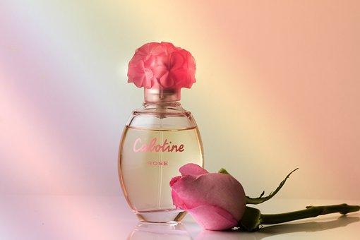 Perfume, Fragrance, Rose, Perfume Bottle, Still Life