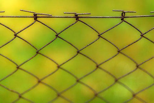 Fence, Background, Wire, Web, Pattern, Barbed Wire