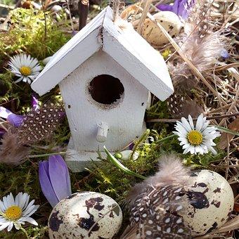 Aviary, Easter Nest, Egg, Decoration, Bird Feeder