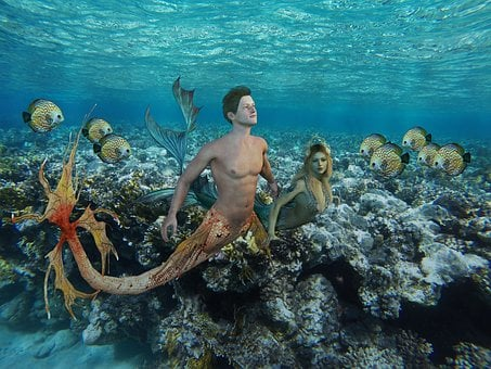 Underwater, Ocean, Sea, Waters, Tropical, Coral, Reef