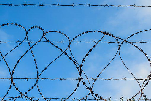 Barbed Wire, Wire, Fence, Forbidden, Jail, Enclosure
