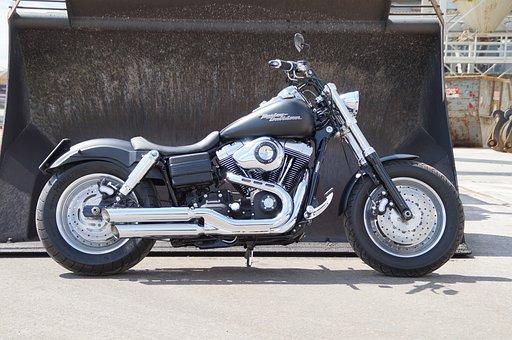 Harley, Harley Davidson, Fatbob, Car, Vehicle, Truck