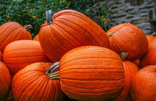 Pumpkin, Food, Nature, Orange, Vegetables, Ripe, Fruit