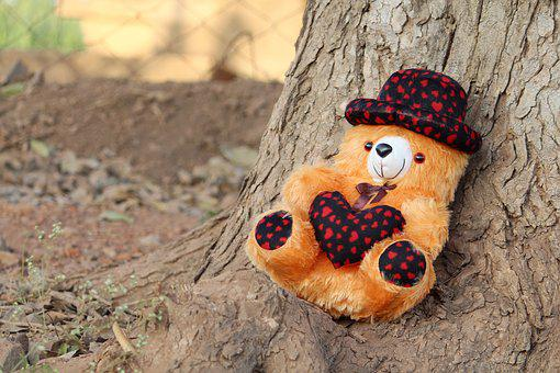 Teddy Bear, Teddy Image, Teddy Wallpaper, Teddy, Brown