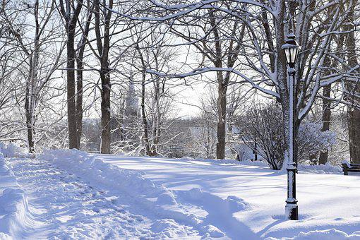 Winter, Snow, Frost, Cold, Season, March 8, Village