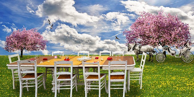 Nature, Spring, Eat, Drink, Picnic, Family Fast, Meadow