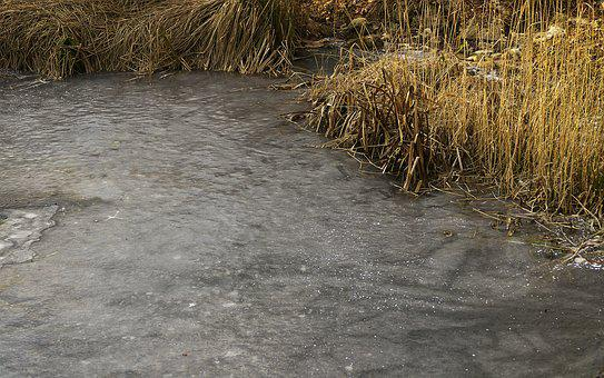 Water, Icy, Eiskristalle, Frozen, Pond, Frost, Winter