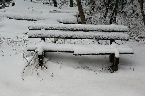 Winter, Snow, Cold, Wood, Frost, Frozen, Ice, Nature