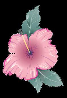 Flower, Icon, Symbol, Design, Flat, Decoration