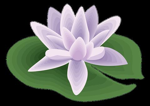Flower, Icon, Symbol, Random, Swirl, Festival, Salute