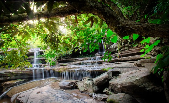 Waterfall, The Forests, Autumn Leaves, Thailand, Pa