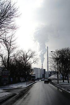 Tree, Road, Winter, Outdoors, Nature, Steam, Chimney