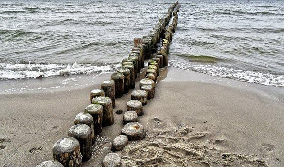 Baltic Sea, Water, Wood Pile, Coastal Protection