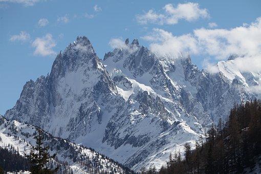 Mountain, Snow, Needles, Green, Dru, Without A Name