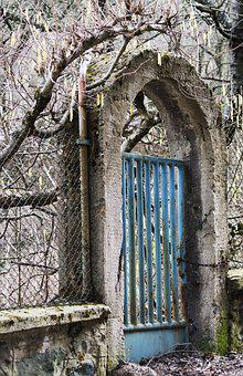 Spring, Buds, Metal, Gate, Blue, Rusty
