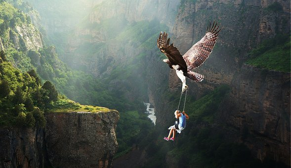 Nature, Waters, Fly, Adventure, Adler, Fantasy
