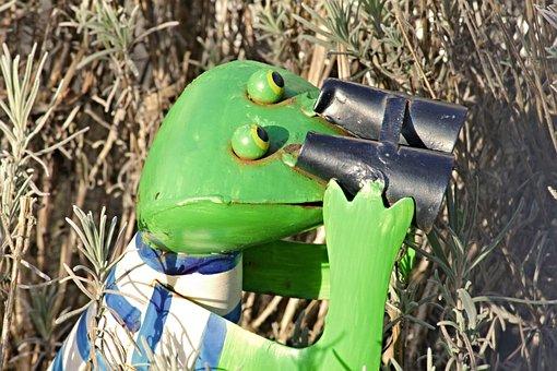 Frog, Binoculars, Tensioner, Optics, Distant View, View