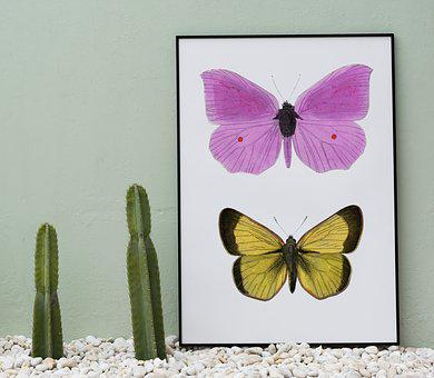 Butterfly, Nature, Insect, Summer, Flower, Board
