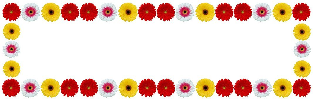 Flower Frame, Gerbera Flower, Color, Desktop, Disjunct