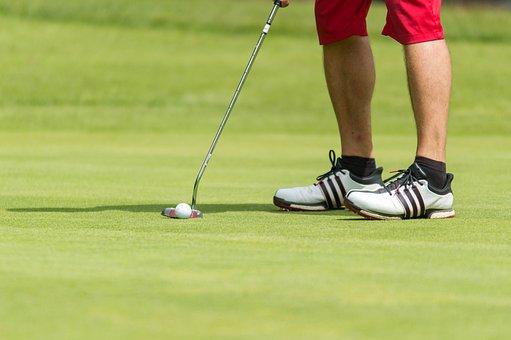 Golf, Golfers, Club, Putten, Ball, Meadow, Summer