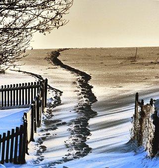 Nature, Landscape, Winter, Snow, Away, Traces, Cold