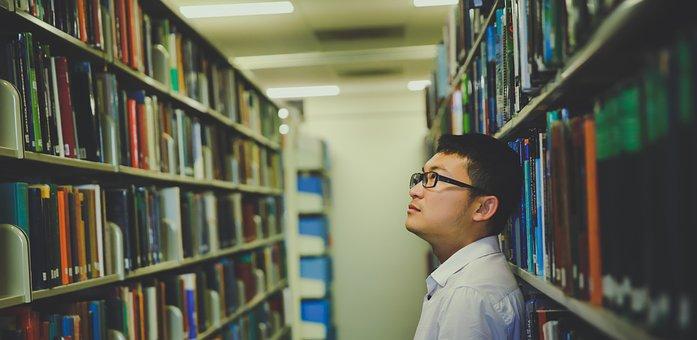 Shelf, Rack, Bookcase, Indoors, Education, Library