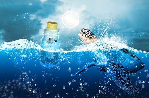 Water, Sea, Nature, Underwater, Ocean, Outdoors, Travel