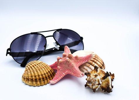 Sunglasses, Seashell, Summer, Glasses, Shells, Starfish