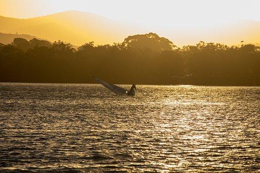 Water, Sunset, Nature, Dawn, Sea, Boat, Vacation, Dusk