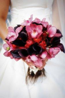 Flower, Beautiful, Floral, Bouquet, Desktop, Color