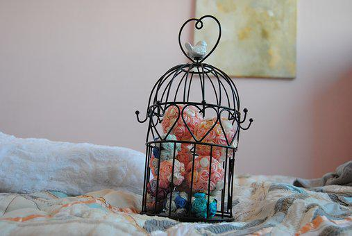 Family, Room, Bird Cage, Ornament, Bird, Pastel Colors