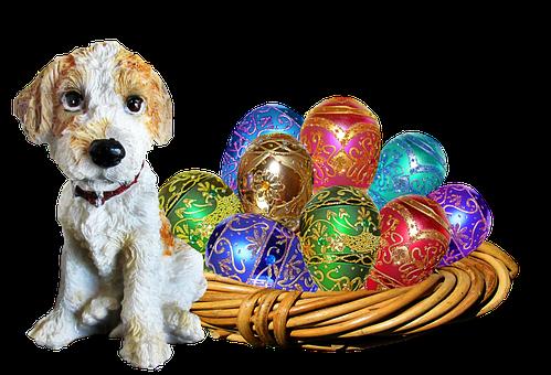 Easter, Dog, Basket, Eggs
